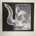Klaas Gubbels grijze kan 1993, 65x51 cm, zeefdruk 13-40